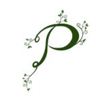 projekt logo Marcela Report